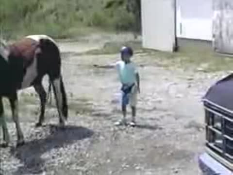A child stands on a horse