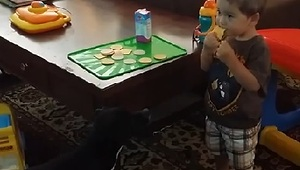 Stealth Dog Casually Steals Baby's Snack - Video