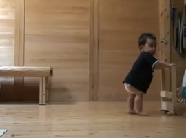 Cat and baby - walking - Video