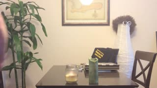 Party Trick: Light a Candle With a Fireball! - Video