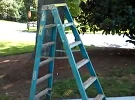 _Self Walking Ladder_ - Video