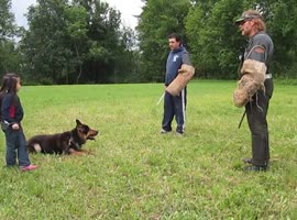 German Shepherd Protects 5 Year Old Girl from 2 Bad Guys