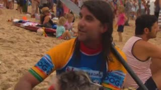 Dog surfing competition in Australia - Video