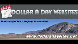 Social Media Management - Dollaradaysites - Video