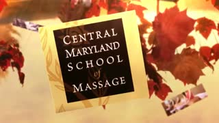 Massage therapy schools - Video