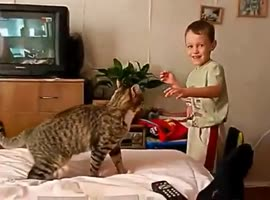 Cat Gets Revenge from Annoying Kid - Video
