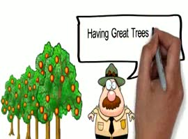 Jacksonville tree service see how to tree trim in Jacksonville - Video