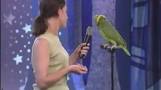 The best singer among parrots - Video