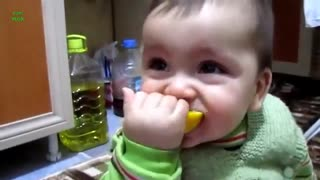 Babies Eating Lemon For The First Time - Video