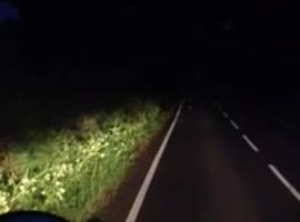 _Bunny Won't Get Off Road_ - Video