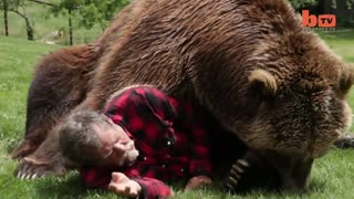 Great friendship between a grizzly bear and Man - Video