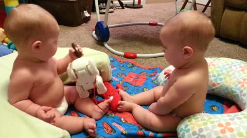 Twin Babies Fight for Toy Puppy