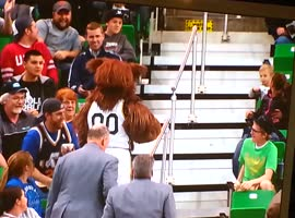 NBA Mascot Vs Drunk Fan - Video