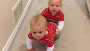 Cutest baby conga line ever! - Video