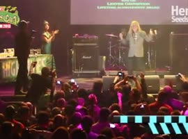 Herbies Adventures @ High Times Cannabis Cup Amsterdam – 24-28 November 2013 Winners Awards Ceremony - Video