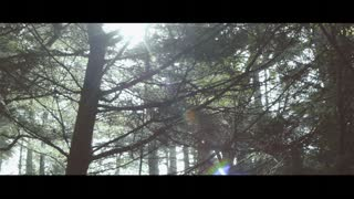 Ethan Schanberger Cinematography Reel 2013 - Video