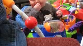 Twin boy's think there dog is so funny - Video