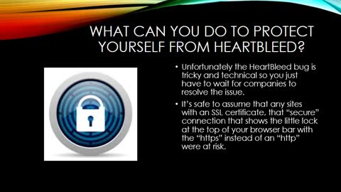 Heartbleed bug; What Business Owners and Customers Need to Do
