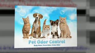 pet odor eliminator - Video