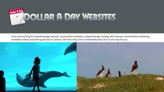 Web Development Company-Dollaradaysites - Video