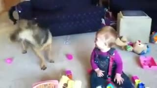 DOG BABY LAUGH - Video