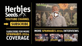 Dinafem Seeds Interview @ Spannabis 2014 in Barcelona - Video