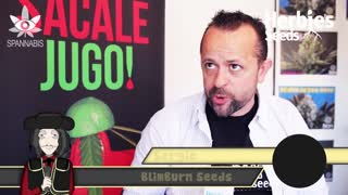 BlimBurn Seeds @ Spannabis Barcelona 2014 - Video