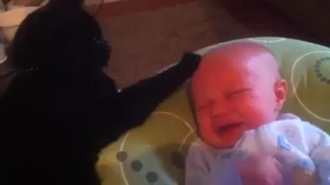 Funny baby and cat ahah