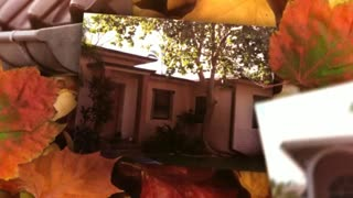 Seamless Gutters Boca Raton - Video