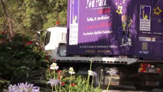 You Pack Removals Customer Testimonial - Video