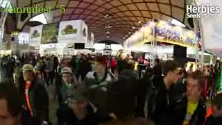 Herbies Semillas - Cannafest 2014 - Video