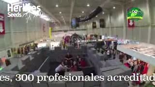 Herbies Semillas - ExpoGrow 2014 - Video
