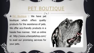Pet Boutique, Organic Dog - Video