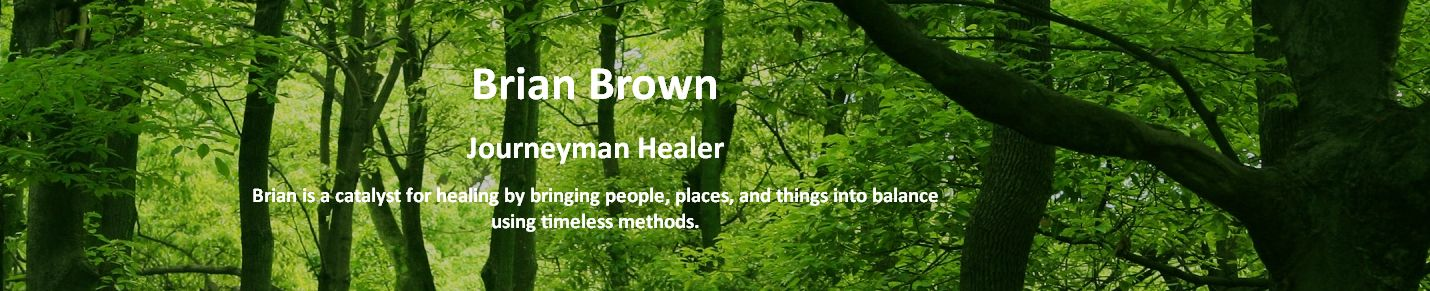 Brian Brown - Journeyman Healer